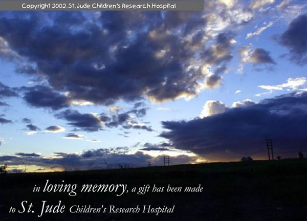 In loving memory, a gift has been made to St. Jude Children's Research Hospital